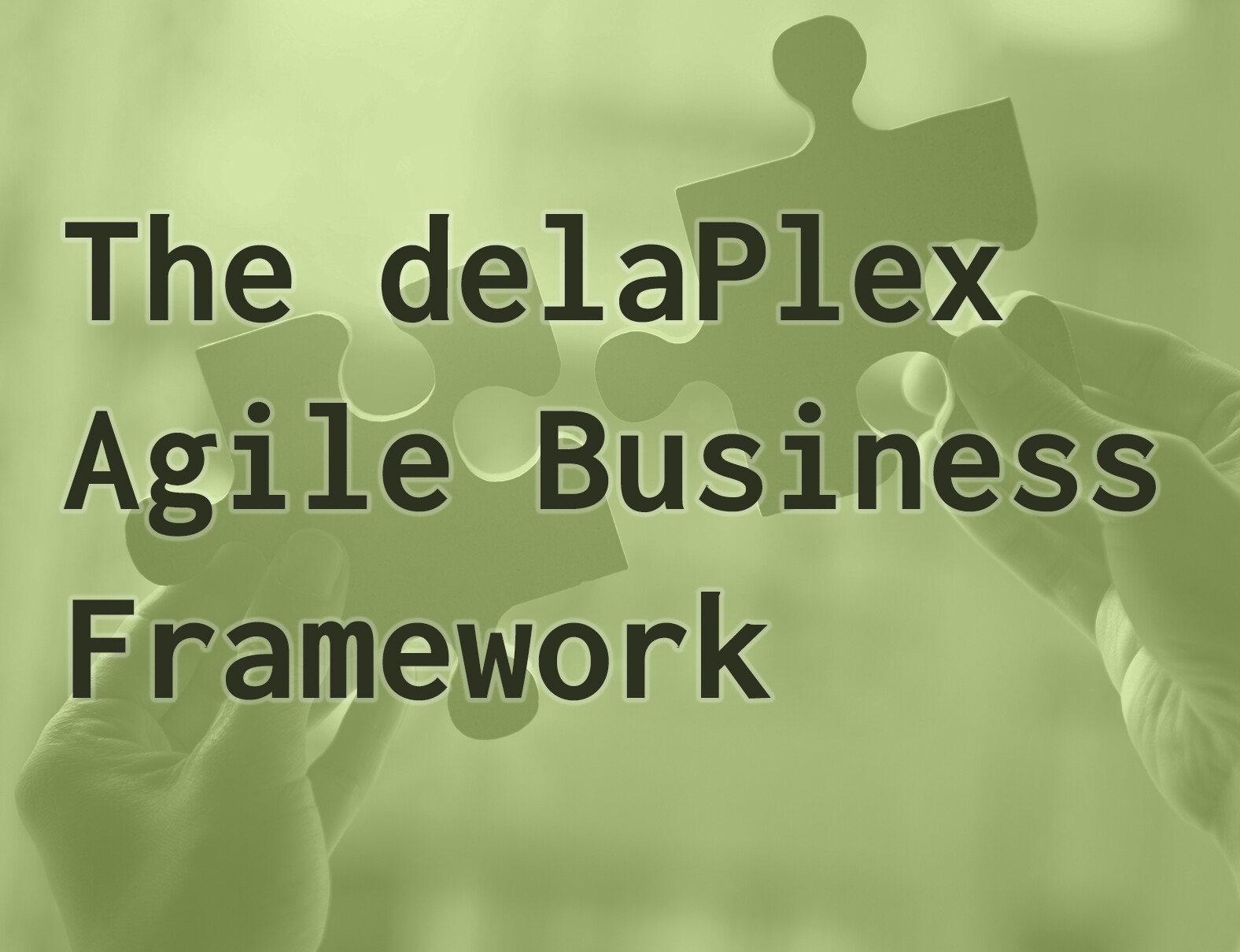 delaPlex Overview Brochure