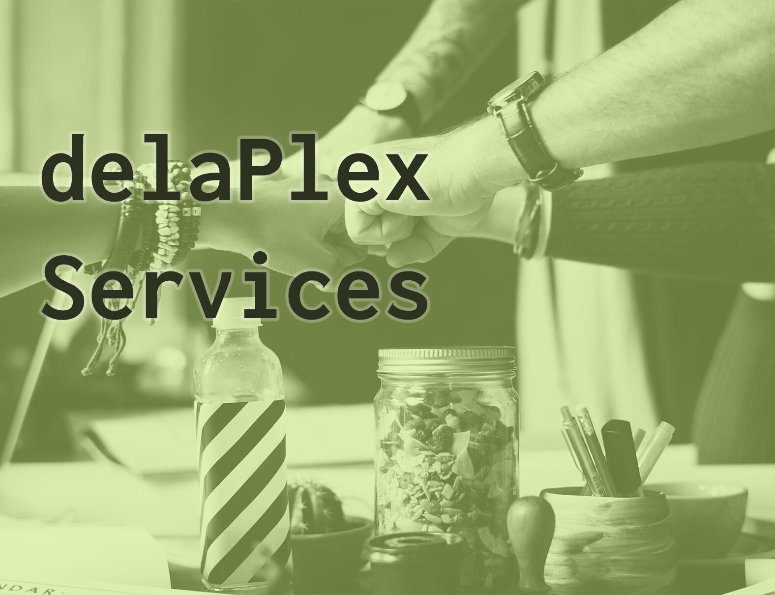 delaPlex Services Brochure