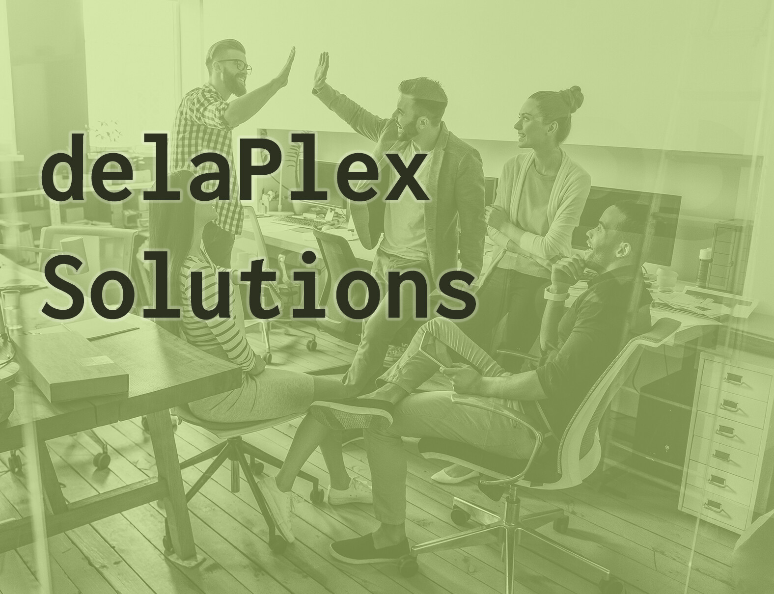 delaPlex Solutions Brochure