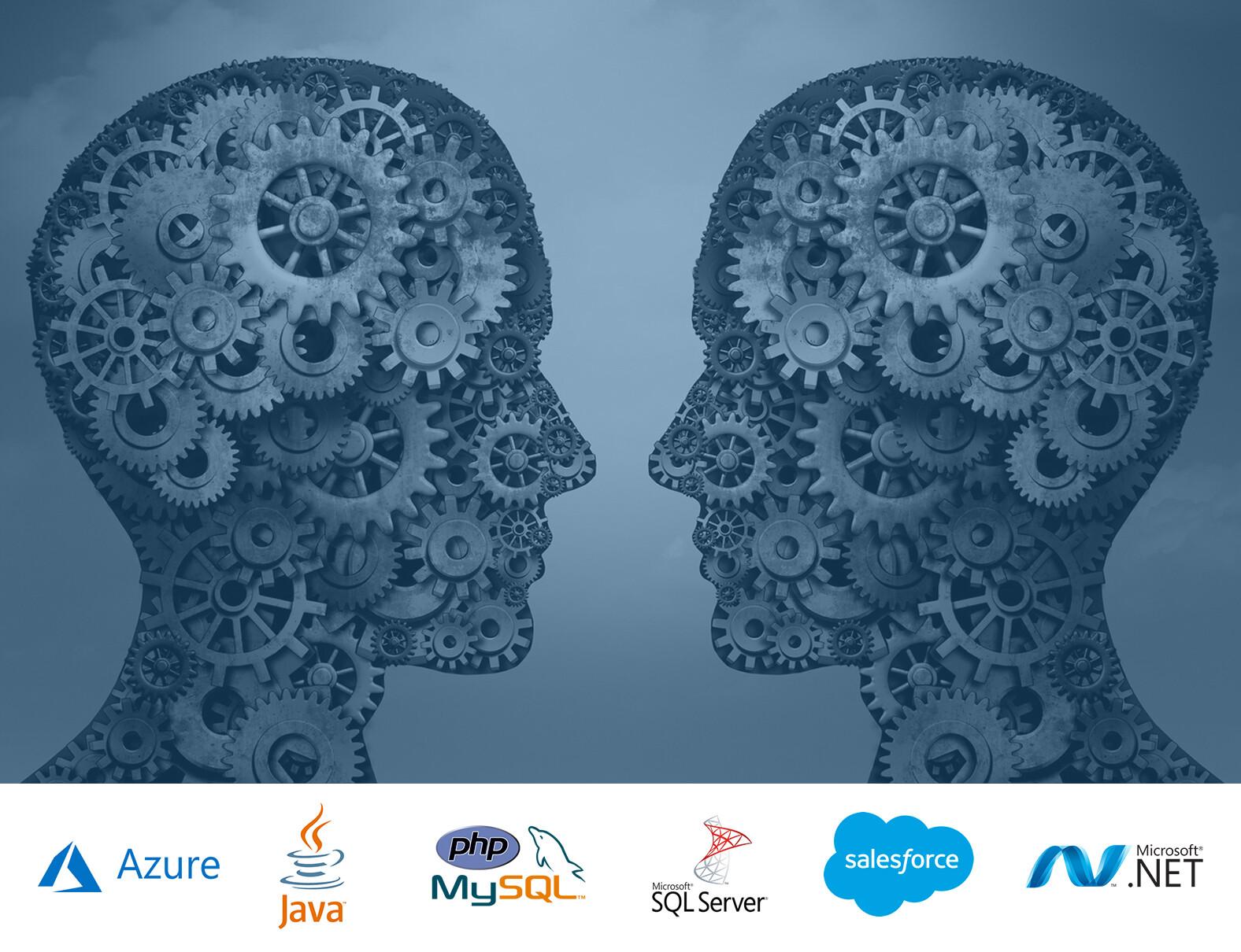 Salesforce Data Integration Service